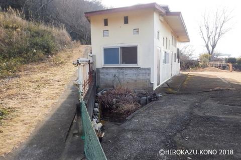 ヤマアカガエル0207-1_1.jpg