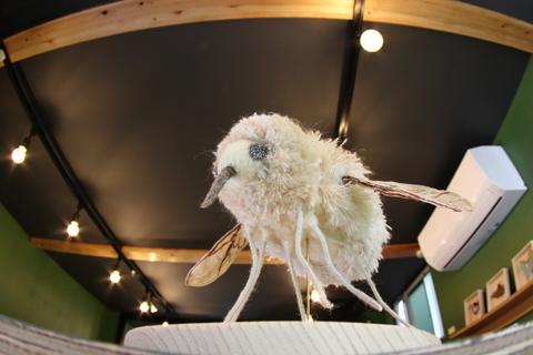 小さな翅20101028-1.JPG