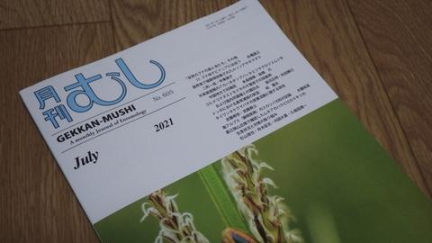 月刊むし202107.JPG
