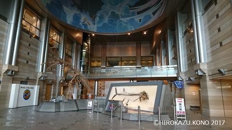 神奈川県立生命の星・地球博物館1_1.jpg