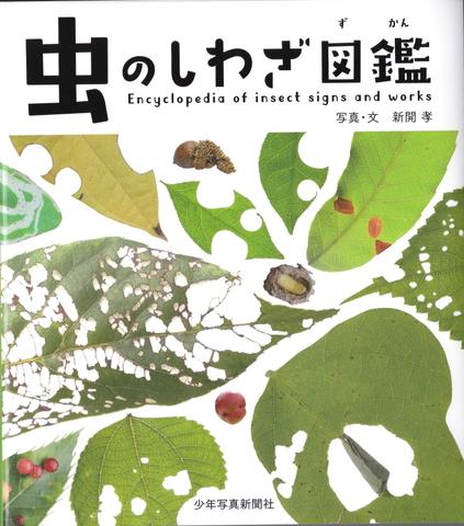 虫のしわざ図鑑1.JPG