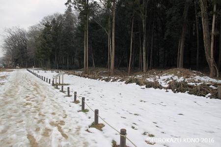 雪0206_1.jpg
