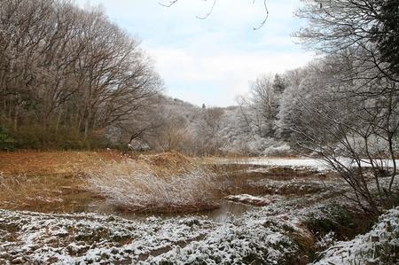 雪0225-3.JPG