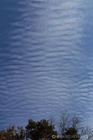 雲1126-1.JPG