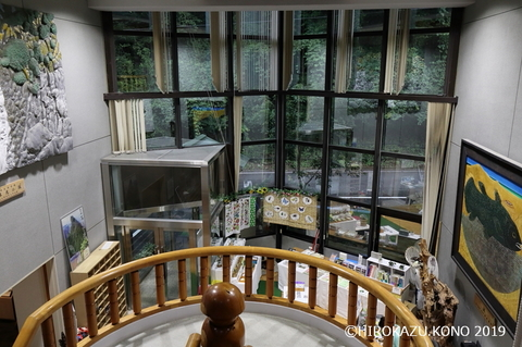 面河山岳博物館0822-2_1.jpg